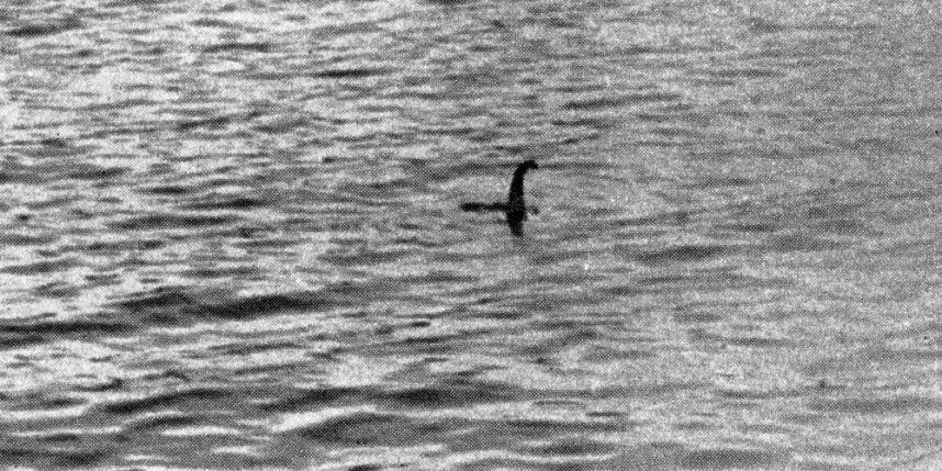 La toute première photo de Nessie