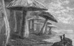 Voyage au Centre de la Terre (Jules Verne)
