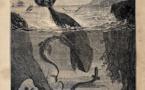 Vingt mille Lieues sous les Mers | Jules Verne | 1869