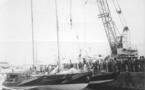Le « Concorde des mers »
