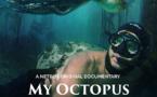 La Sagesse de la Pieuvre   My Octopus Teacher   2020