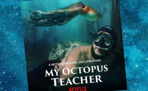 La Sagesse de la Pieuvre (My Octopus Teacher, 2020)